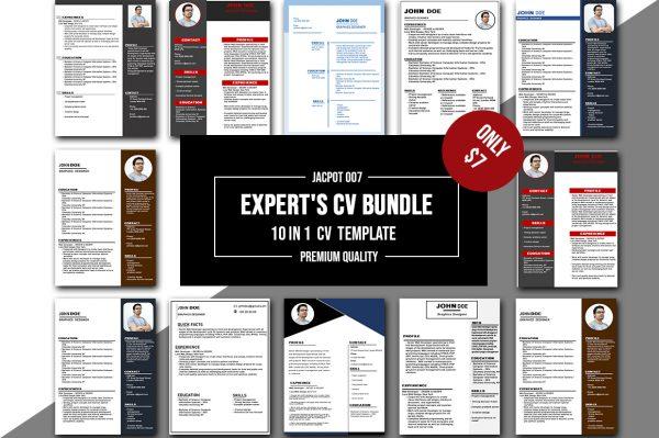 10 In 1 Expert's CV Bundle