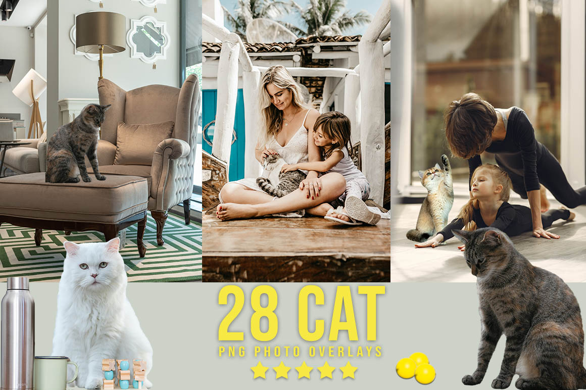 2900+Ultimate Cute Photo Overlays Bundle